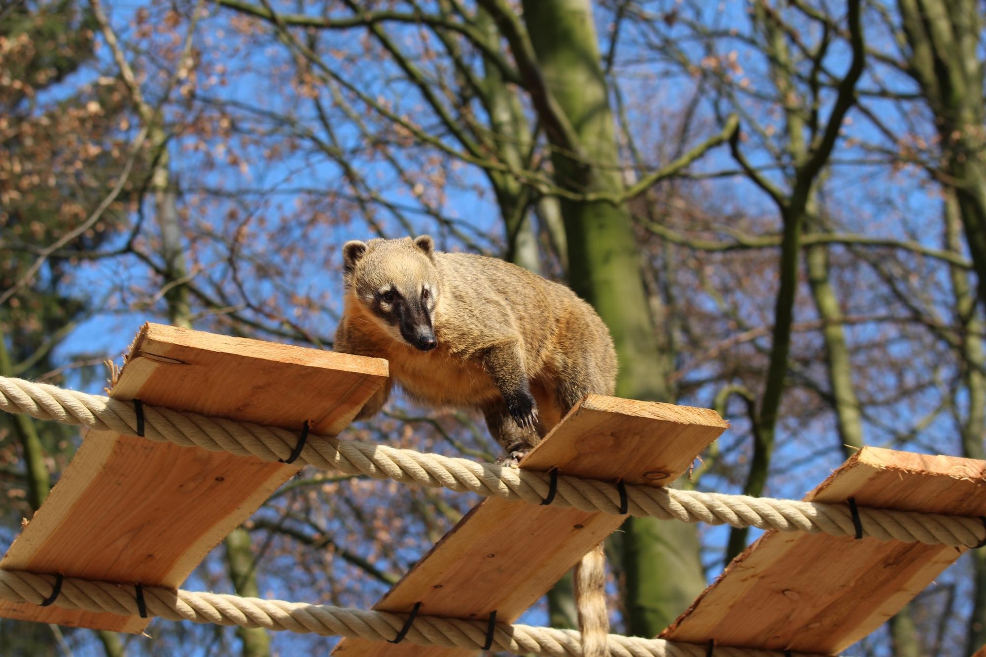 Zoo Osnabrück Home